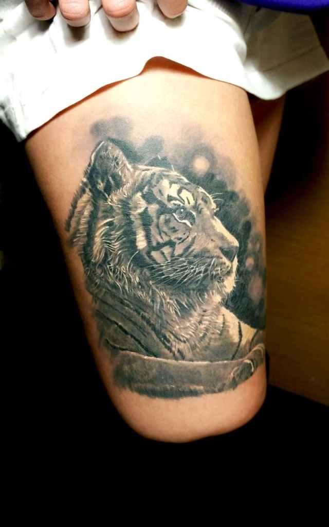 Tigre realismo