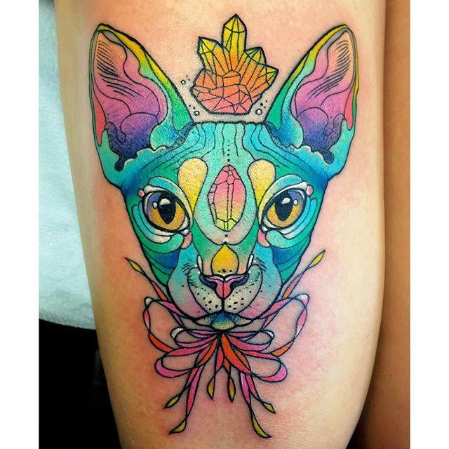 Gatos por Katie Shocrylas