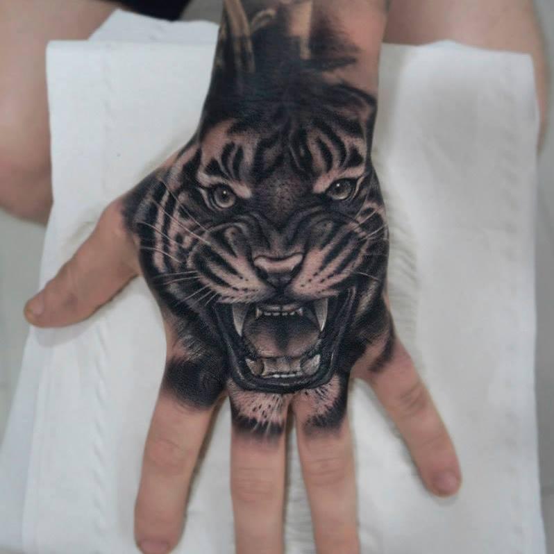 Magnifico tigre en negro y gris