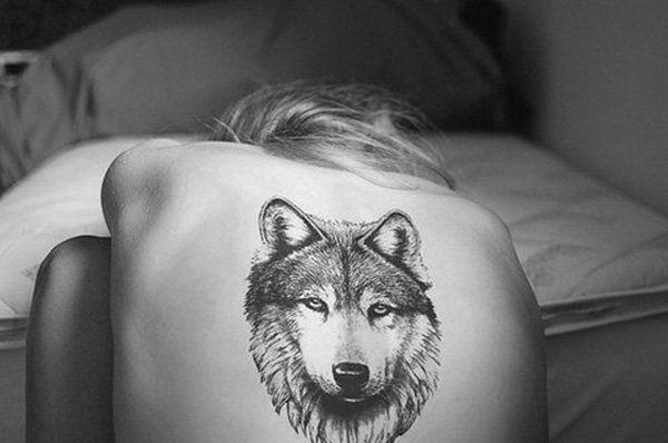 Tatuajes De Lobos, Las Mejores Fotos De La Web